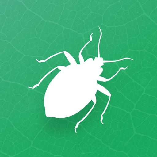 1509386339 Bons plans App Store du 16/06/2020
