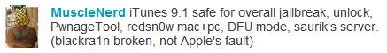 Sans titre1 Jailbreak   La DevTeam confirme que iTunes 9.1 ne gêne en rien le Jailbreak