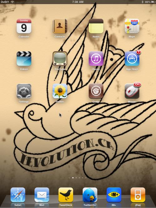 IMG 0080 500x666 Cydia   Contrôlez votre iPad avec une souris Bluetooth [Vidéo]