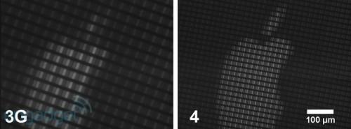 iphone microscopy 02 500x185 News   Comparaison entre lécran de liPhone 3G et de liPhone 4
