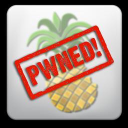 pwnagetool pwned Jailbreak News   Comex à réussi le Jailbreak de tous les appareils sous iOS 4