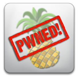 pwnagetool pwned2 Jailbreak News   MuscleNerd : Le désimlockage de liPhone 4 progresse encore et encore ...