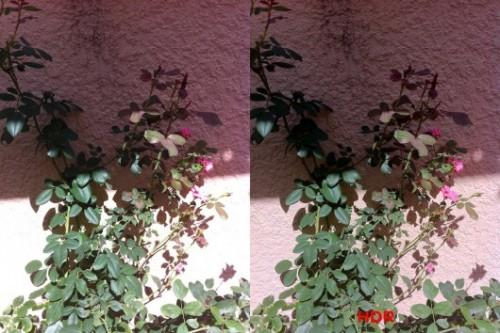 2img 00071 530x354 500x333 iOS 4.1   Nouveauté : La photo HDR