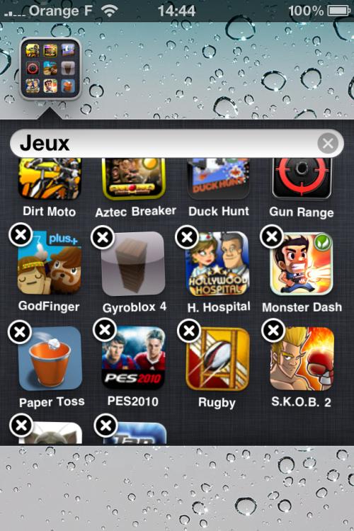 infinifolders 500x750 Cydia   InfiniDock et InfiniFolders mis à jour : compatible iOS 4.1