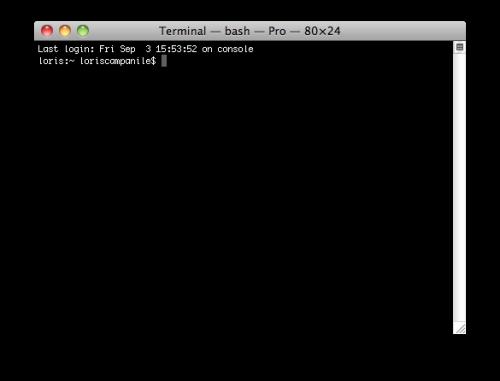 terminal 500x381 Astuces   Remettre les 3 icônes à lhorizontal sous iTunes 10