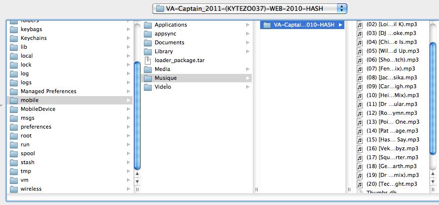 Capture d'écran 2011 02 25 à 19.56.21 Tutoriel   iFile : écouter/visionner un MP3 ou un Divx sans passer par iTunes