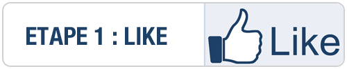 Facebook11 Concours : EasyWifi 5 LICENCES [MAJ]