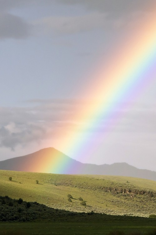 Rainbow in Field 500x750 Les 3 Wallpapers iPhone du jour (07/04/12)