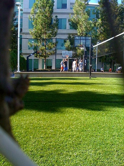 basketball Quelques photos du campus de Cupertino