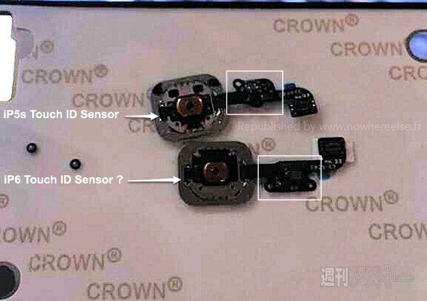 iphone 6 TouchID Des images fuitées du Touch ID de l'iPhone 6 ?