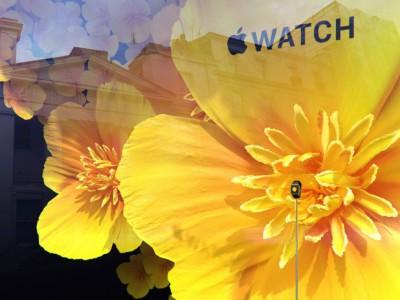 apple watch vitrine londres e1440148846251 L'Apple Watch exposée dans toutes les vitrines de Selfridges