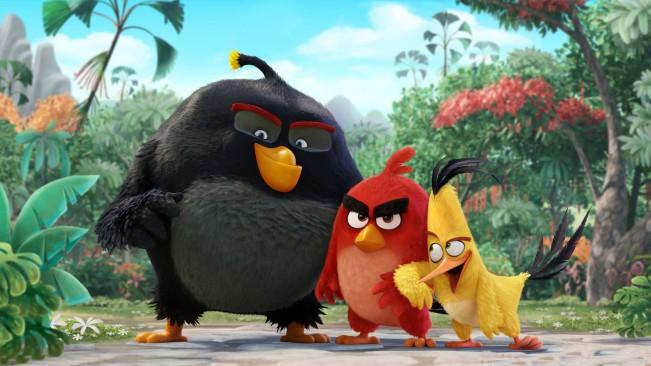 angry birds film e1443087778112 Un premier trailer du film Angry Birds