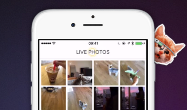 live gif e1444908190107 Live GIF : convertissez vos Live Photos iPhone 6s en GIF