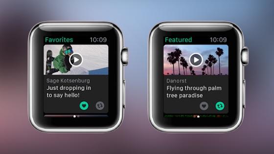 Vine Application Apple Watch Vine : mise à jour sur iOS et lancement du compagnon pour Apple Watch