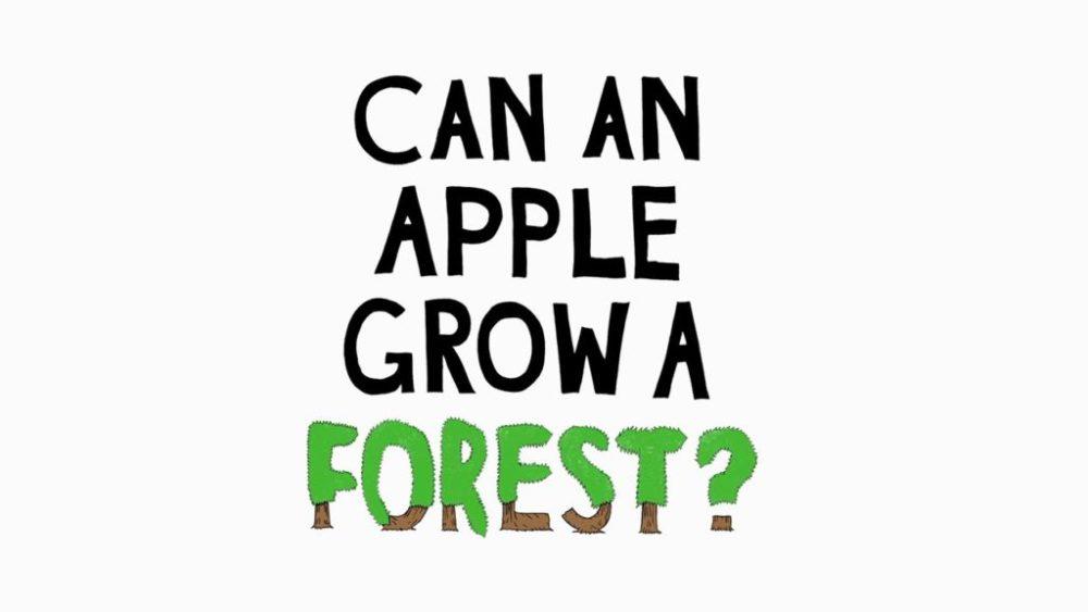 Apple Forest video 1024x576 Vidéo dApple pour la préservation des forêts