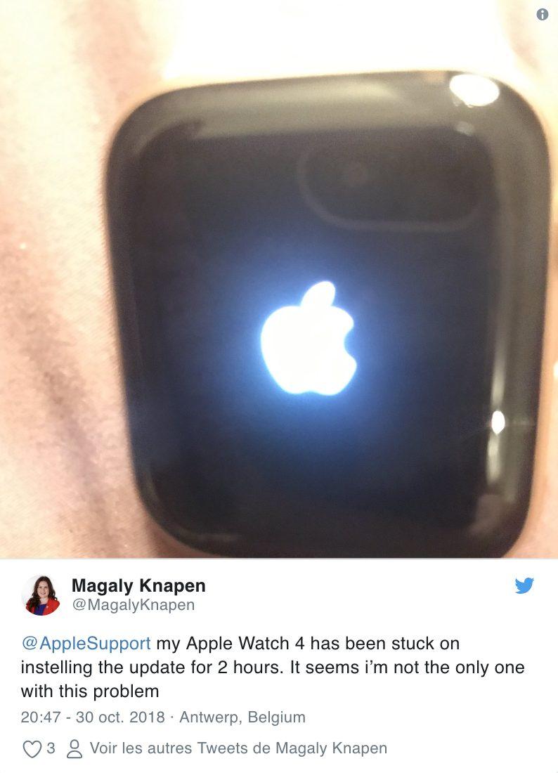 Capture d'écran 2018 10 30 à 23.19.46 Attention ! watchOS 5.1 peut faire planter votre Apple Watch, ninstallez pas la mise à jour