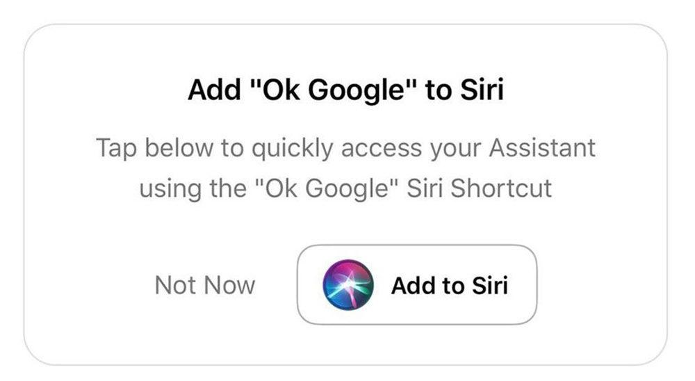 Hey Siri Google Assistant 1000x548 Vous pouvez maintenant dire « Hey Siri, Ok Google » pour utiliser Google Assistant