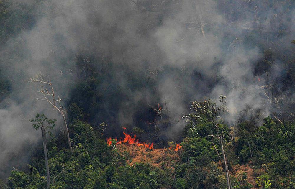Amazonie Foret Feu 1000x641 Incendies en Amazonie : Tim Cook annonce quApple va faire un don
