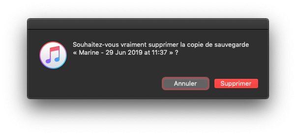 itunes confirmer supprimer sauvegarde Comment et pourquoi effectuer une sauvegarde archivée de son iPhone ?