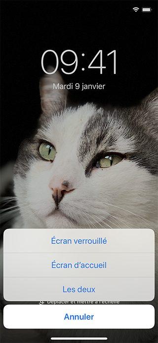iphone photo fond decran Comment utiliser le mode nuit sur iPhone ou iPad