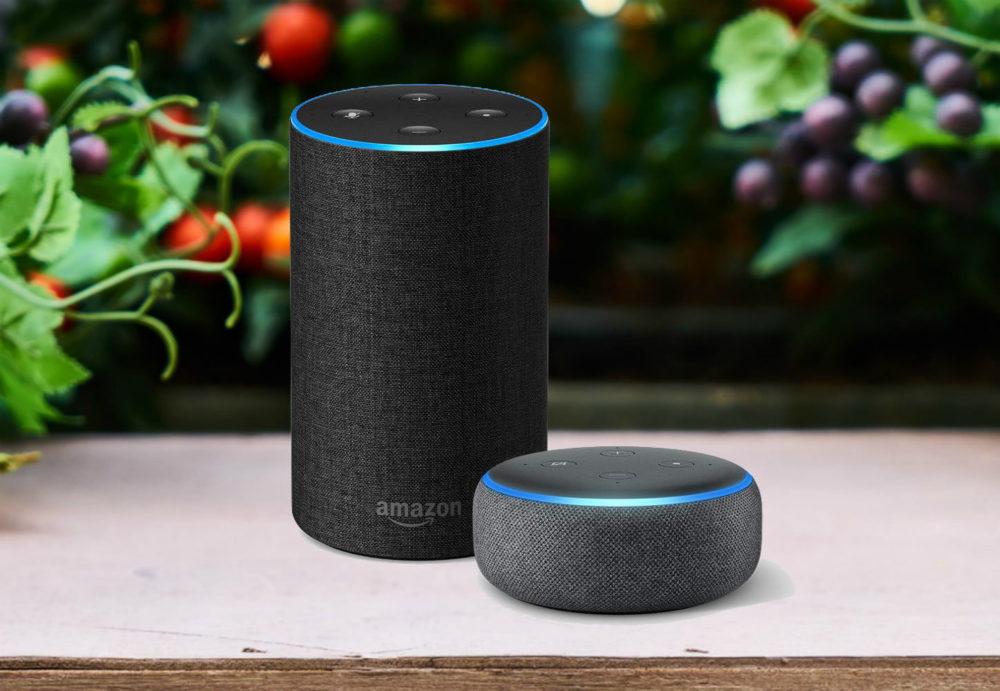 amazon echo Il est maintenant possible de lire les Podcasts dApple sur les enceintes Amazon Echo